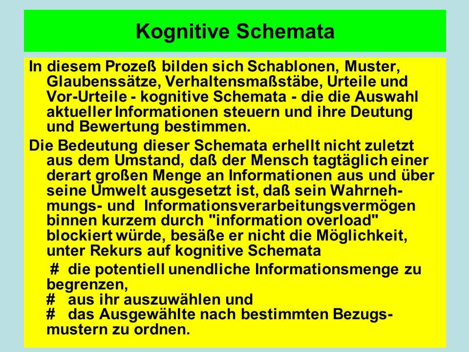 Kognitive Schemata In diesem Prozeß bilden sich Schablonen, Muster, Glaubenssätze, Verhaltensmaßstäbe, Urteile und Vor-Urteile - kognitive Schemata - die die Auswahl aktueller Informationen steuern und ihre Deutung und Bewertung bestimmen.