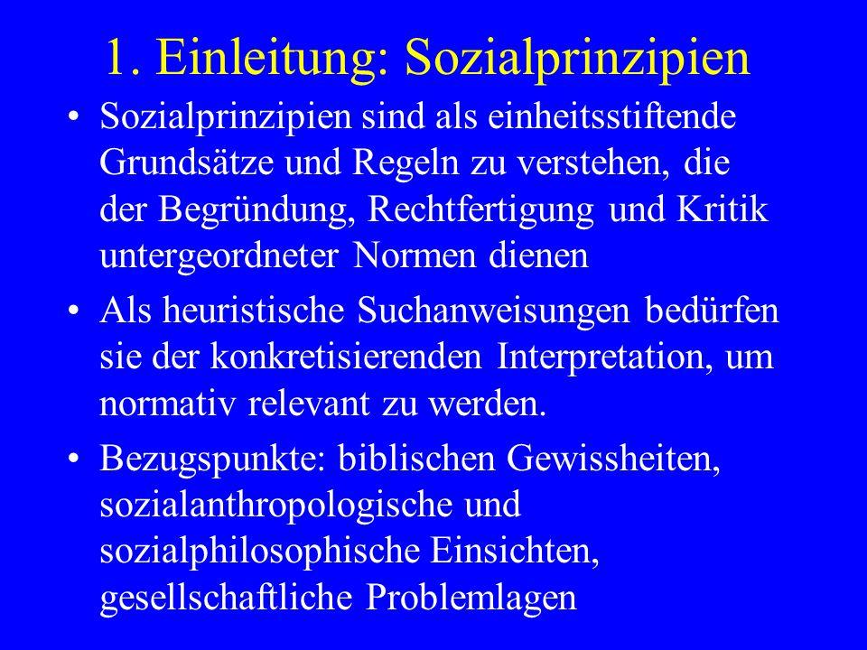1. Einleitung: Sozialprinzipien Sozialprinzipien sind als einheitsstiftende Grundsätze und Regeln zu verstehen, die der Begründung, Rechtfertigung und