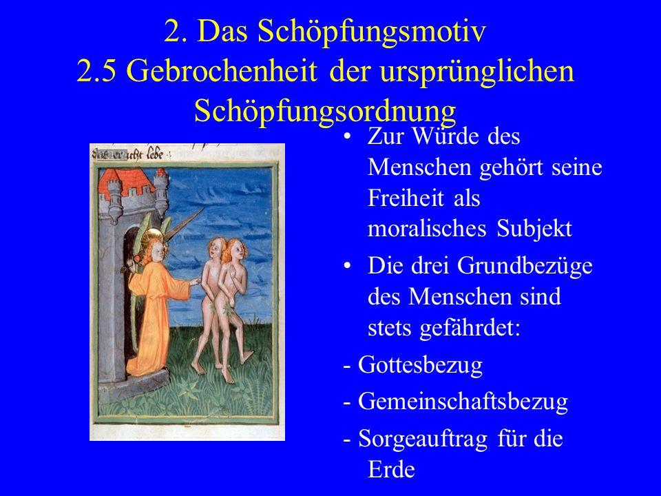 2. Das Schöpfungsmotiv 2.5 Gebrochenheit der ursprünglichen Schöpfungsordnung Zur Würde des Menschen gehört seine Freiheit als moralisches Subjekt Die