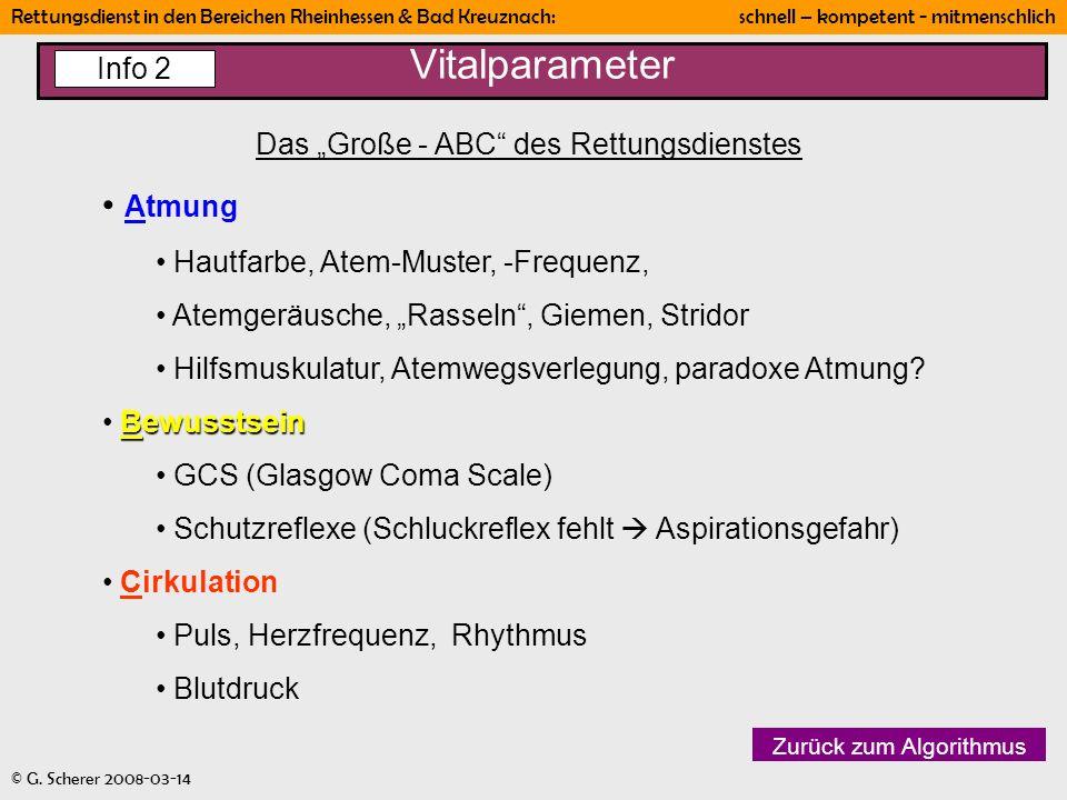 Rettungsdienst in den Bereichen Rheinhessen & Bad Kreuznach: schnell – kompetent - mitmenschlich © G. Scherer 2008-03-14 Vitalparameter Das Große - AB