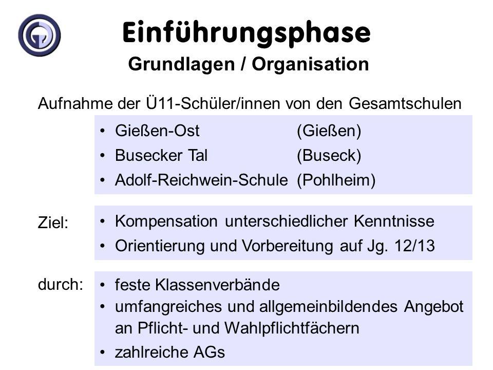 Organisation der Einführungsphase Grundlagen / Organisation Ziel: Kompensation unterschiedlicher Kenntnisse Orientierung und Vorbereitung auf Jg.