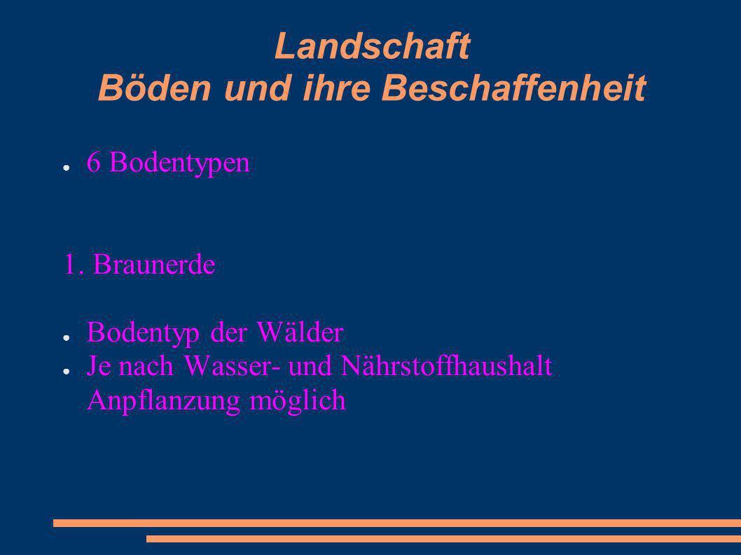 Landschaft Böden und ihre Beschaffenheit 6 Bodentypen 1. Braunerde Bodentyp der Wälder Je nach Wasser- und Nährstoffhaushalt Anpflanzung möglich