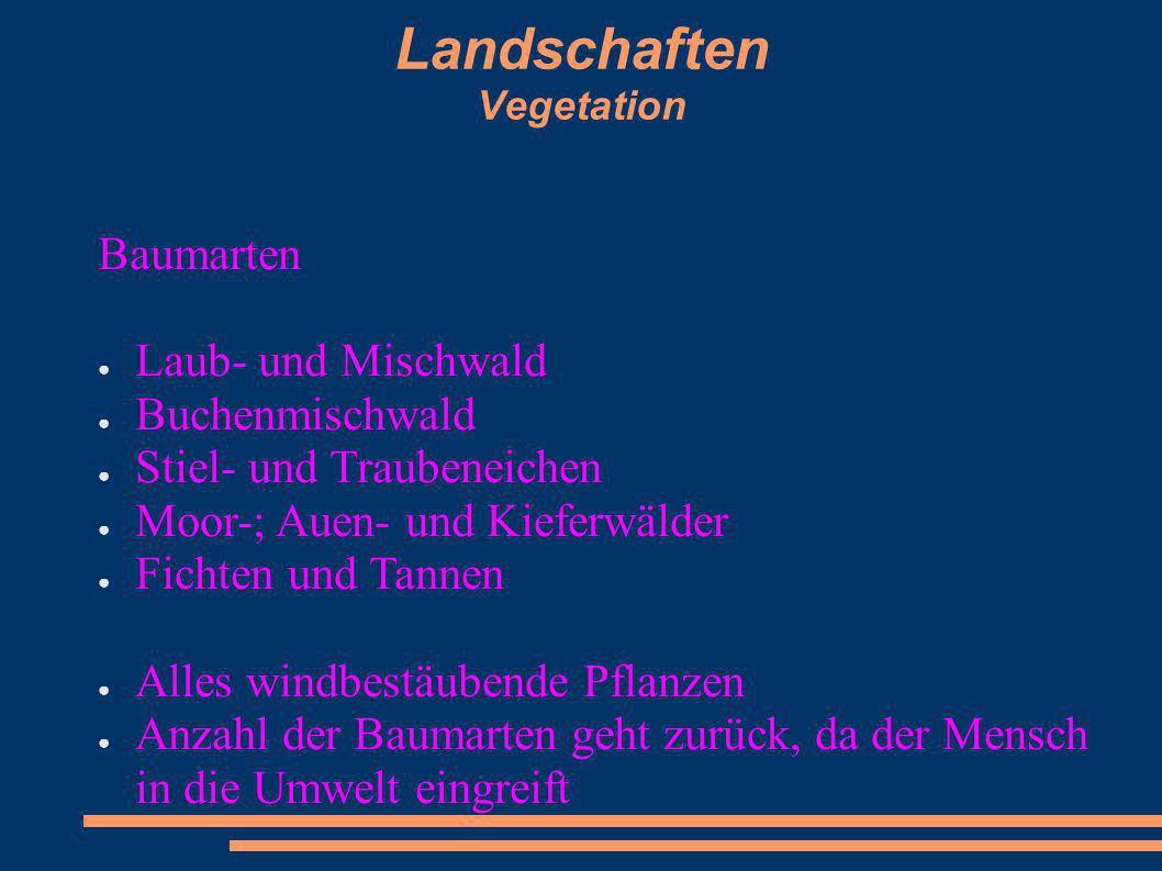 Landschaften Vegetation Baumarten Laub- und Mischwald Buchenmischwald Stiel- und Traubeneichen Moor-; Auen- und Kieferwälder Fichten und Tannen Alles