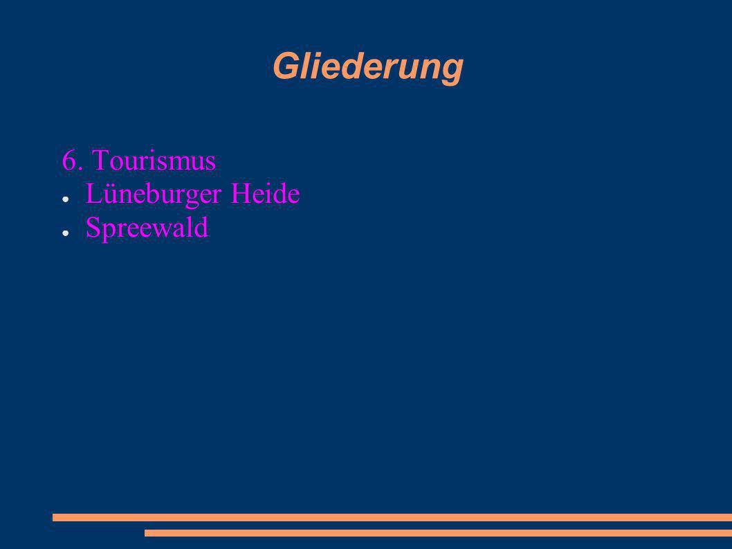 Gliederung 6. Tourismus Lüneburger Heide Spreewald