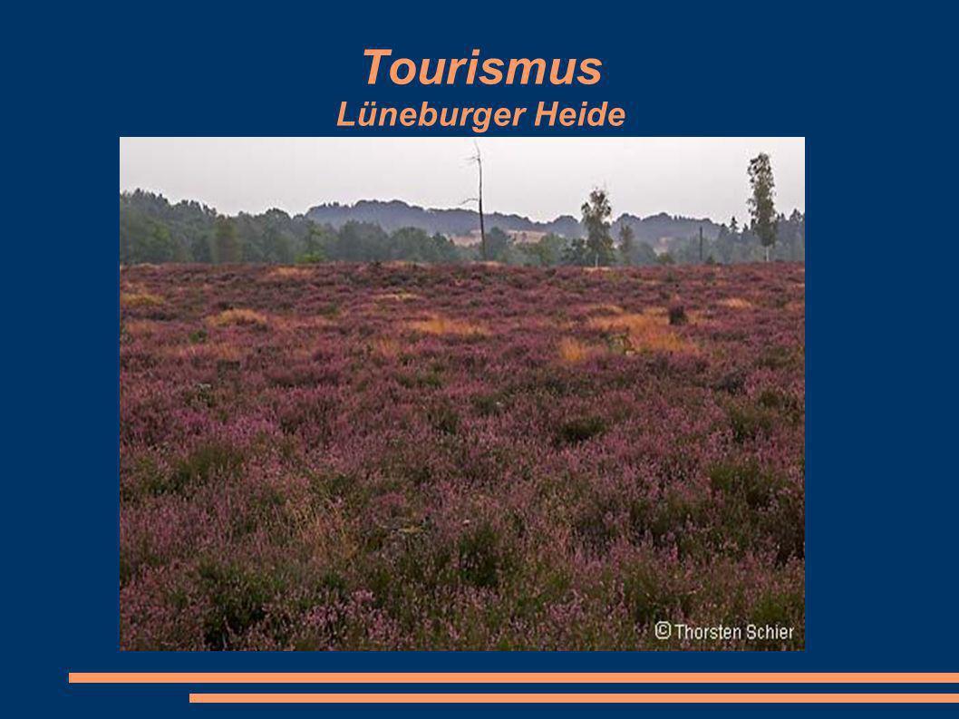 Tourismus Lüneburger Heide