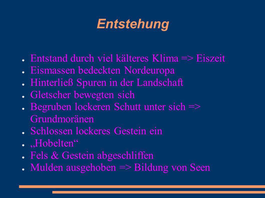 Bördenhöfe (Großbetriebe) Weiterverwertung der Zuckerrüben 1.