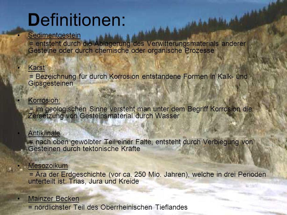 Definitionen: Sedimentgestein = entsteht durch die Ablagerung des Verwitterungsmaterials anderer Gesteine oder durch chemische oder organische Prozess