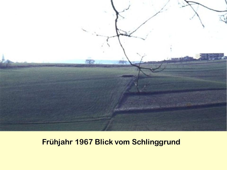 Frühjahr 1967 Blick vom Schlinggrund