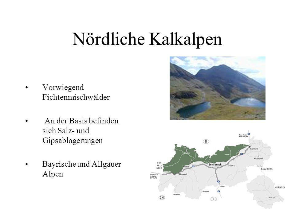 Ostalpen Befinden sich vom Bodensee entlang des Rheins über den Splügenpass zum Comer See und Lago Maggiore Sie durchziehen ganz Österreich von Vorarl