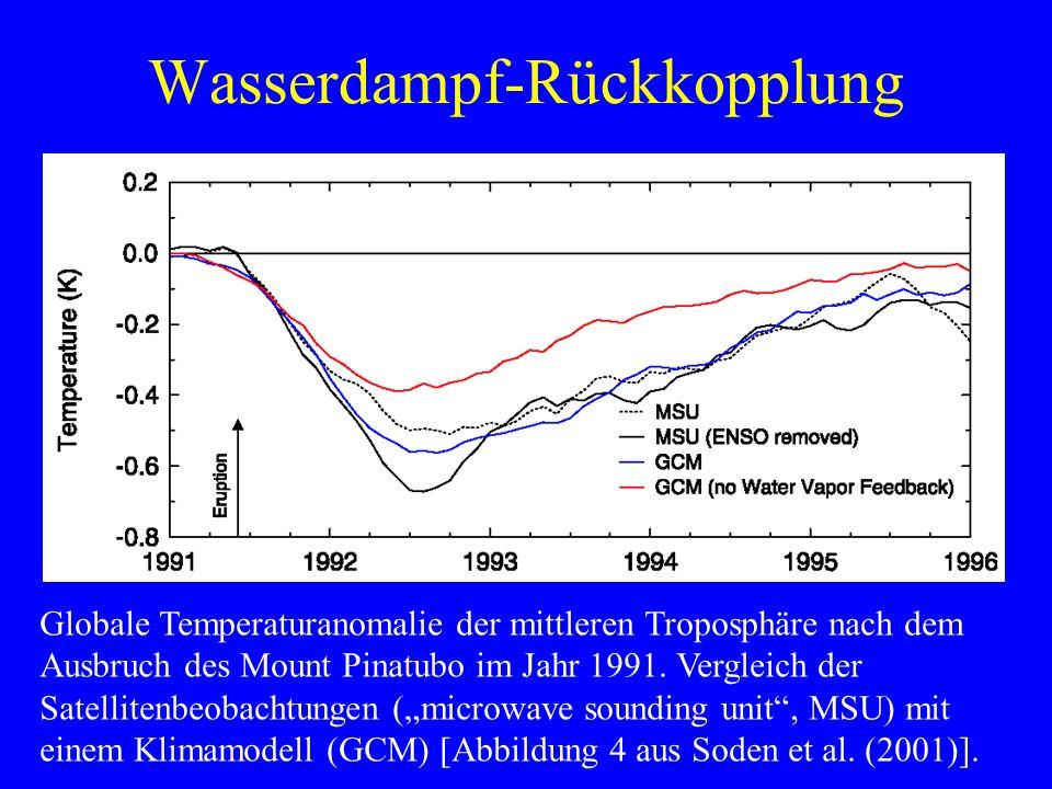 Wasserdampf-Rückkopplung Globale Temperaturanomalie der mittleren Troposphäre nach dem Ausbruch des Mount Pinatubo im Jahr 1991.