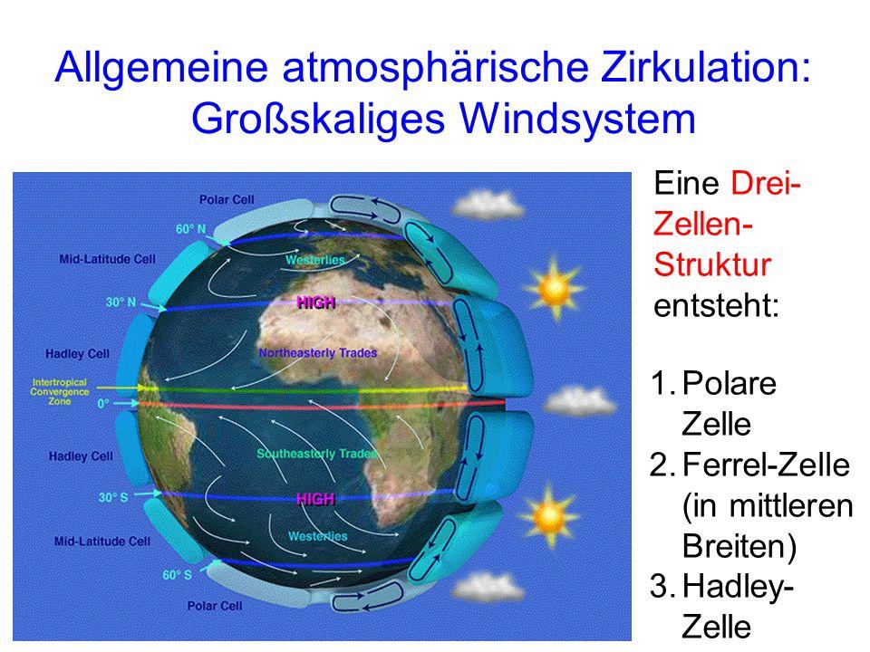Allgemeine atmosphärische Zirkulation: Großskaliges Windsystem 1.Polare Zelle 2.Ferrel-Zelle (in mittleren Breiten) 3.Hadley- Zelle Eine Drei- Zellen- Struktur entsteht: