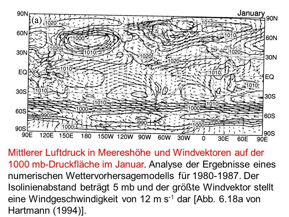 Mittlerer Luftdruck in Meereshöhe und Windvektoren auf der 1000 mb-Druckfläche im Januar.