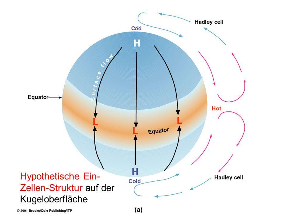 Hypothetische Ein- Zellen-Struktur auf der Kugeloberfläche