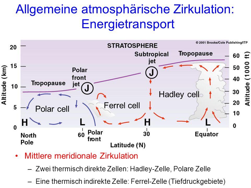Allgemeine atmosphärische Zirkulation: Energietransport Hadley cell Ferrel cell Polar cell Mittlere meridionale Zirkulation –Zwei thermisch direkte Zellen: Hadley-Zelle, Polare Zelle –Eine thermisch indirekte Zelle: Ferrel-Zelle (Tiefdruckgebiete)