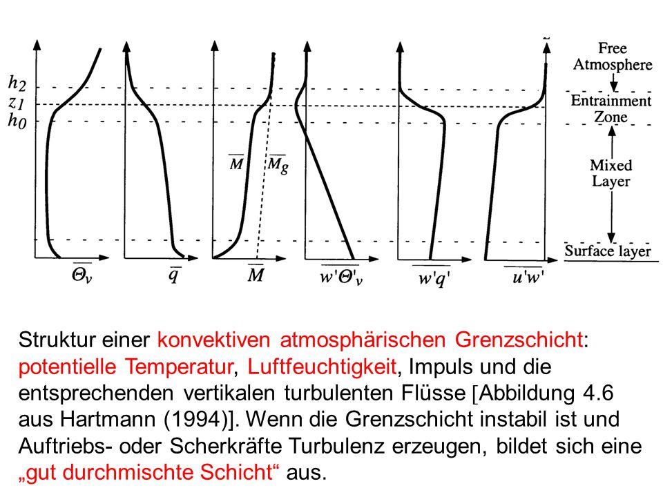 Struktur einer konvektiven atmosphärischen Grenzschicht: potentielle Temperatur, Luftfeuchtigkeit, Impuls und die entsprechenden vertikalen turbulente