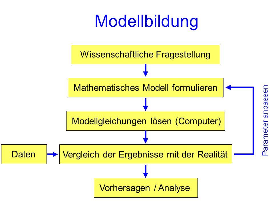 Modellbildung Wissenschaftliche Fragestellung Mathematisches Modell formulierenModellgleichungen lösen (Computer)Vergleich der Ergebnisse mit der Real