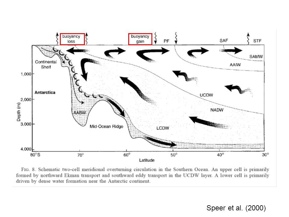 In CLISIM gibt es verschiedeneversetzte oder gestaffelte Gitter für –Temperatur und Salzgehalt (tracer T- Gitterzellen) –horizontale Geschwindigkeit (an den nördlichen und südlichen Grenzflächen der T- Gitterzellen definiert) und –vertikale Geschwindigkeit (am Boden der T- Gitterzellen definiert).