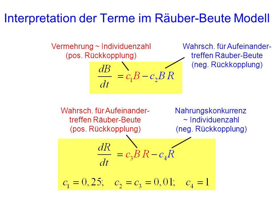 Interpretation der Terme im Räuber-Beute Modell Vermehrung ~ Individuenzahl (pos. Rückkopplung) Wahrsch. für Aufeinander- treffen Räuber-Beute (neg. R