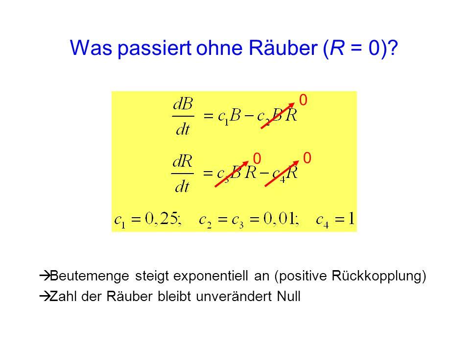 Was passiert ohne Räuber (R = 0)? 0 0 0 Beutemenge steigt exponentiell an (positive Rückkopplung) Zahl der Räuber bleibt unverändert Null