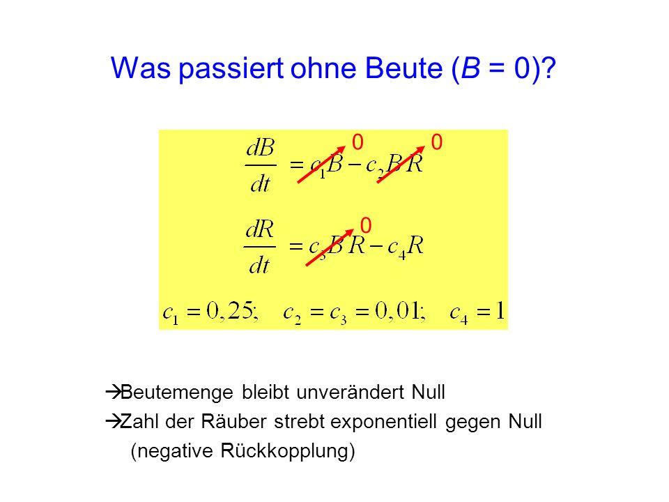 Was passiert ohne Beute (B = 0)? 0 0 0 Beutemenge bleibt unverändert Null Zahl der Räuber strebt exponentiell gegen Null (negative Rückkopplung)