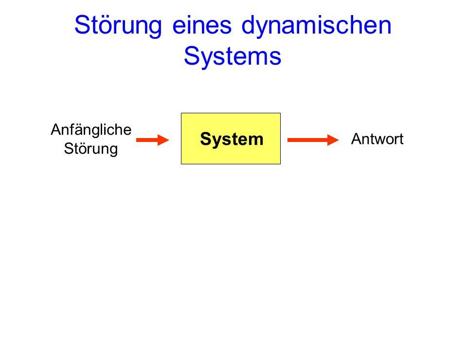 Störung eines dynamischen Systems System Anfängliche Störung Antwort