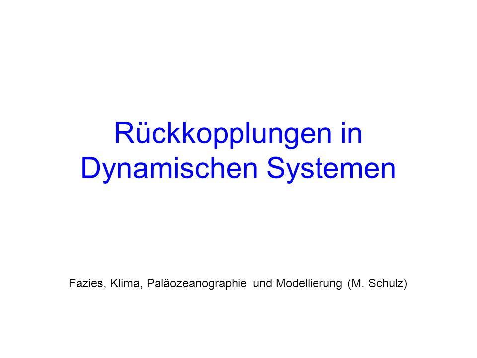 Rückkopplungen in Dynamischen Systemen Fazies, Klima, Paläozeanographie und Modellierung (M. Schulz)