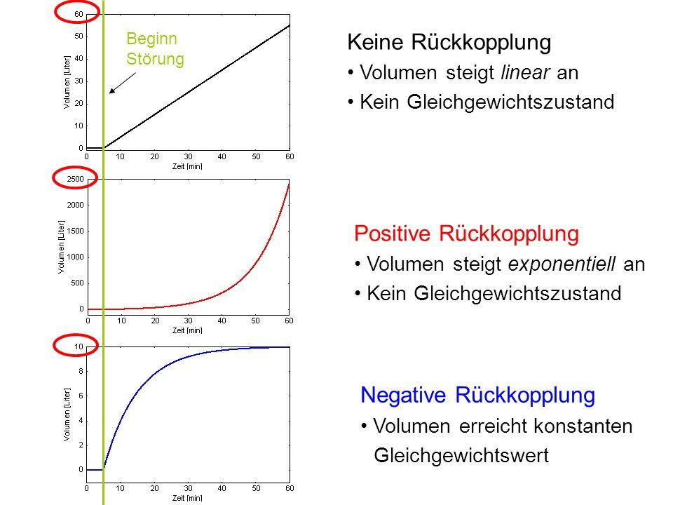 Keine Rückkopplung Volumen steigt linear an Kein Gleichgewichtszustand Positive Rückkopplung Volumen steigt exponentiell an Kein Gleichgewichtszustand