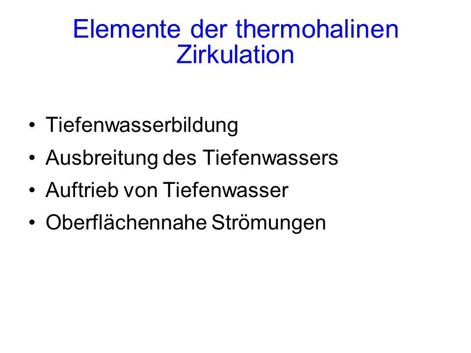 Elemente der thermohalinen Zirkulation Tiefenwasserbildung Ausbreitung des Tiefenwassers Auftrieb von Tiefenwasser Oberflächennahe Strömungen