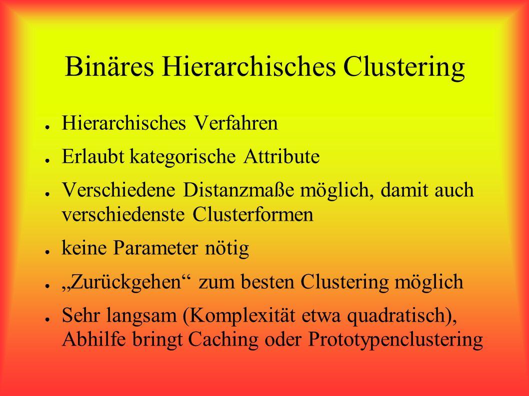 Binäres Hierarchisches Clustering Hierarchisches Verfahren Erlaubt kategorische Attribute Verschiedene Distanzmaße möglich, damit auch verschiedenste Clusterformen keine Parameter nötig Zurückgehen zum besten Clustering möglich Sehr langsam (Komplexität etwa quadratisch), Abhilfe bringt Caching oder Prototypenclustering