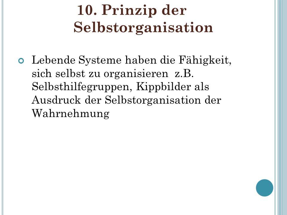 10. Prinzip der Selbstorganisation Lebende Systeme haben die Fähigkeit, sich selbst zu organisieren z.B. Selbsthilfegruppen, Kippbilder als Ausdruck d