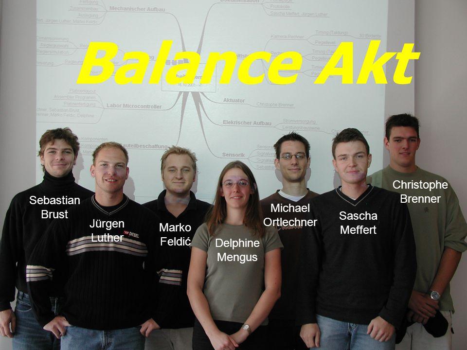 Labor Mikrocontroller Projekt – Balance Akt Gruppe 213.02.2004 Mit Hilfe eines mechatronischen Systems soll eine Kugel auf einer ebenen Platte balanciert werden.