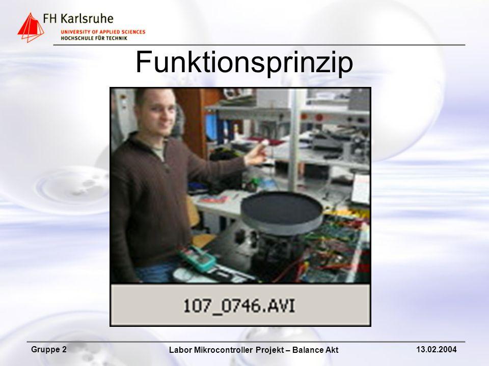 Labor Mikrocontroller Projekt – Balance Akt Gruppe 213.02.2004 Dokumentation Projekt – Dokumentation vom Prinzip bis zur Ausarbeitung nach VDI 2222.