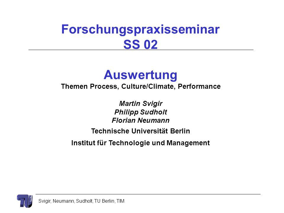 Svigir, Neumann, Sudholt, TU Berlin, TIM Forschungspraxisseminar SS 02 Auswertung Themen Process, Culture/Climate, Performance Martin Svigir Philipp S