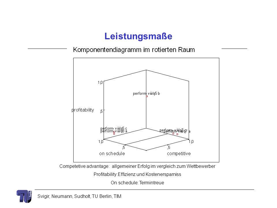 Svigir, Neumann, Sudholt, TU Berlin, TIM Leistungsmaße Competetive advantage: allgemeiner Erfolg im vergleich zum Wettbewerber Profitability:Effizienz