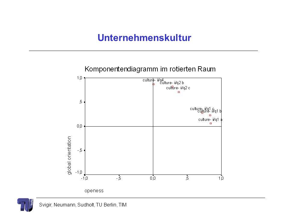 Svigir, Neumann, Sudholt, TU Berlin, TIM Unternehmenskultur