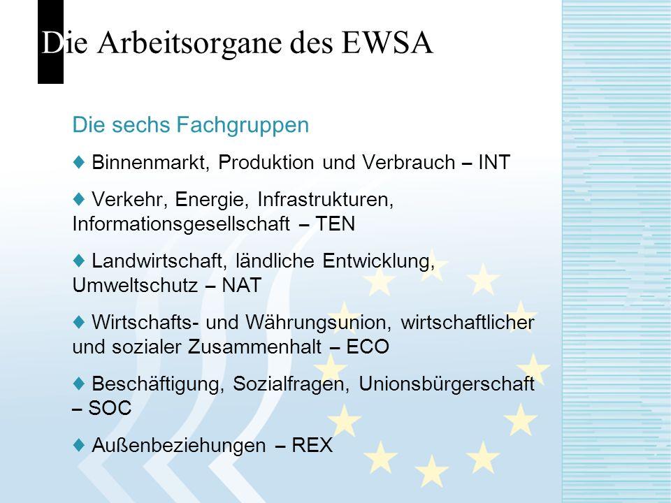 Die Arbeitsorgane des EWSA Die sechs Fachgruppen Binnenmarkt, Produktion und Verbrauch – INT Verkehr, Energie, Infrastrukturen, Informationsgesellscha