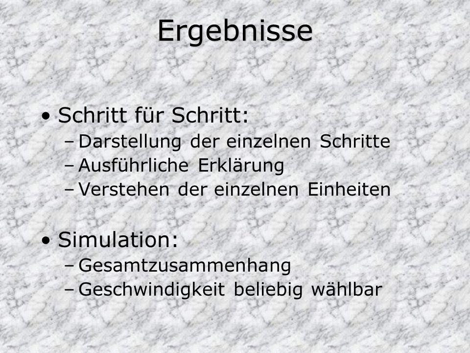 Ergebnisse Schritt für Schritt: –Darstellung der einzelnen Schritte –Ausführliche Erklärung –Verstehen der einzelnen Einheiten Simulation: –Gesamtzusa