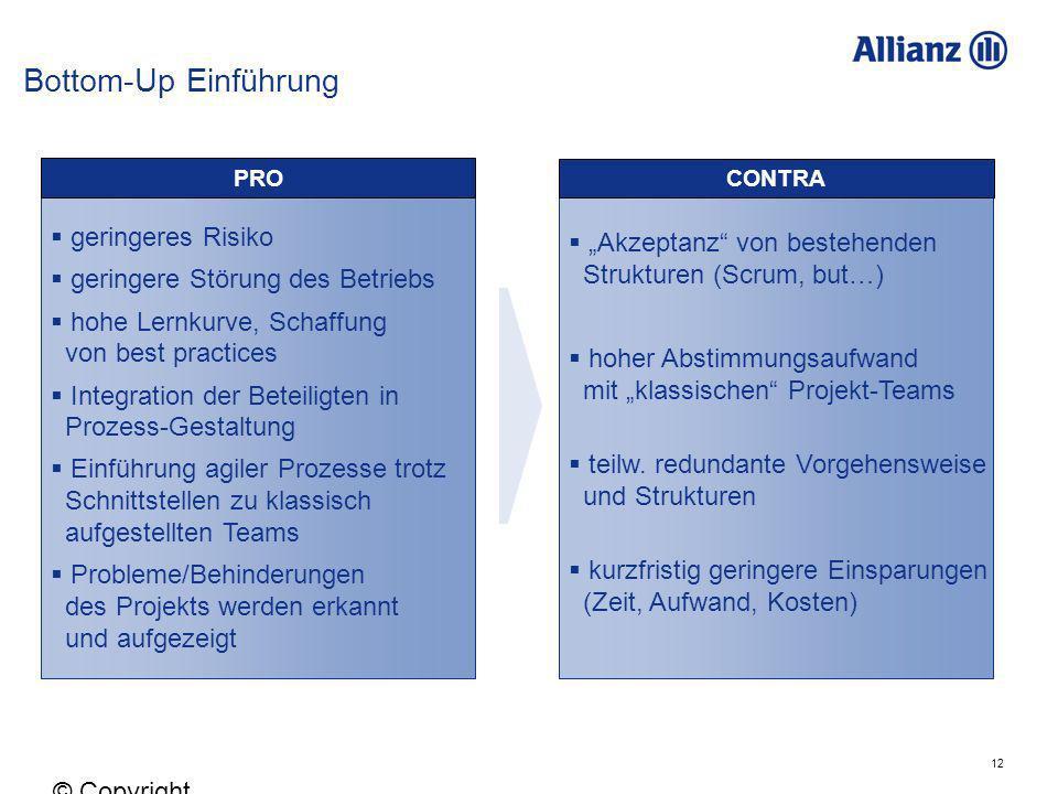 12 © Copyright Allianz 05.03.2012 geringeres Risiko geringere Störung des Betriebs hohe Lernkurve, Schaffung von best practices Integration der Beteil