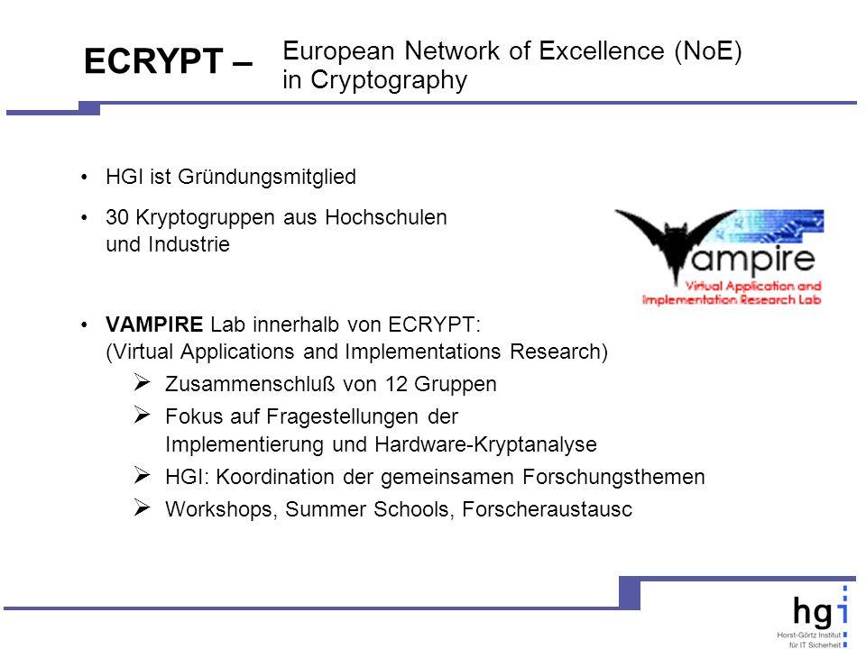 European Network of Excellence (NoE) in Cryptography HGI ist Gründungsmitglied 30 Kryptogruppen aus Hochschulen und Industrie VAMPIRE Lab innerhalb von ECRYPT: (Virtual Applications and Implementations Research) Zusammenschluß von 12 Gruppen Fokus auf Fragestellungen der Implementierung und Hardware-Kryptanalyse HGI: Koordination der gemeinsamen Forschungsthemen Workshops, Summer Schools, Forscheraustausc ECRYPT –