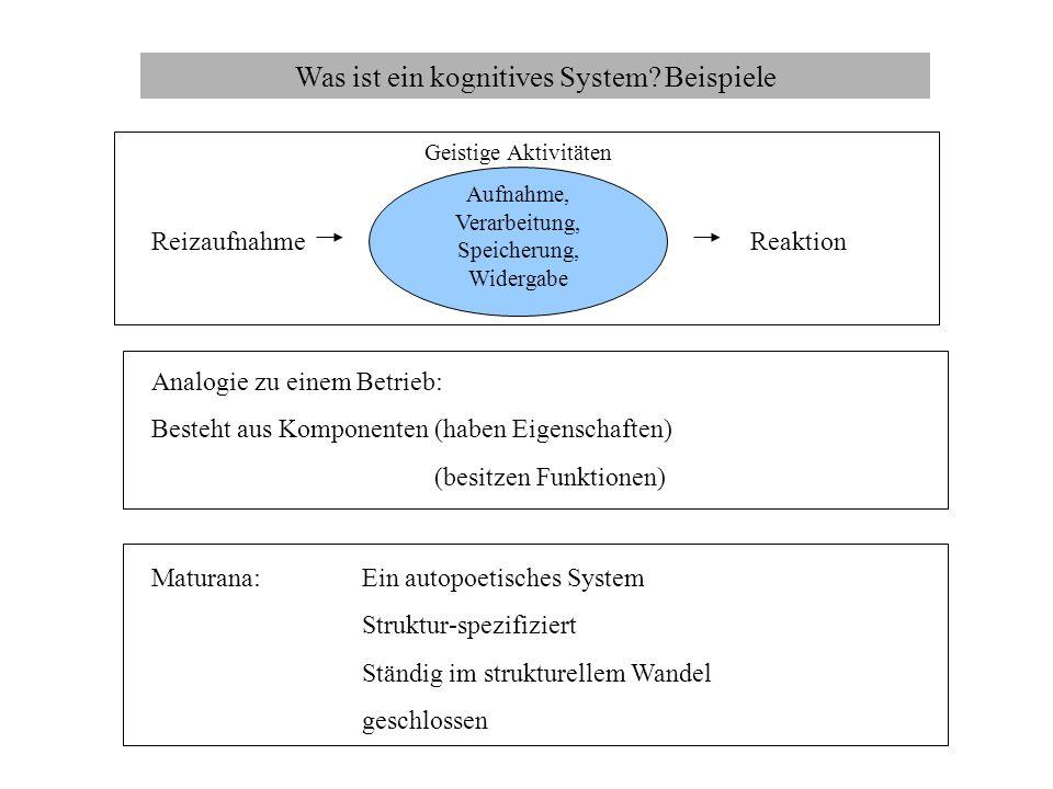 Was ist ein kognitives System? Beispiele Analogie zu einem Betrieb: Besteht aus Komponenten (haben Eigenschaften) (besitzen Funktionen) Reizaufnahme G