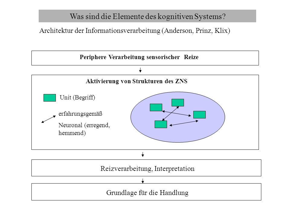 Was sind die Elemente des kognitiven Systems? Architektur der Informationsverarbeitung (Anderson, Prinz, Klix) Unit (Begriff) Periphere Verarbeitung s