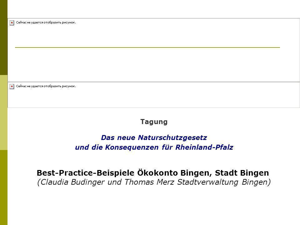 Tagung Das neue Naturschutzgesetz und die Konsequenzen für Rheinland-Pfalz Best-Practice-Beispiele Ökokonto Bingen, Stadt Bingen (Claudia Budinger und