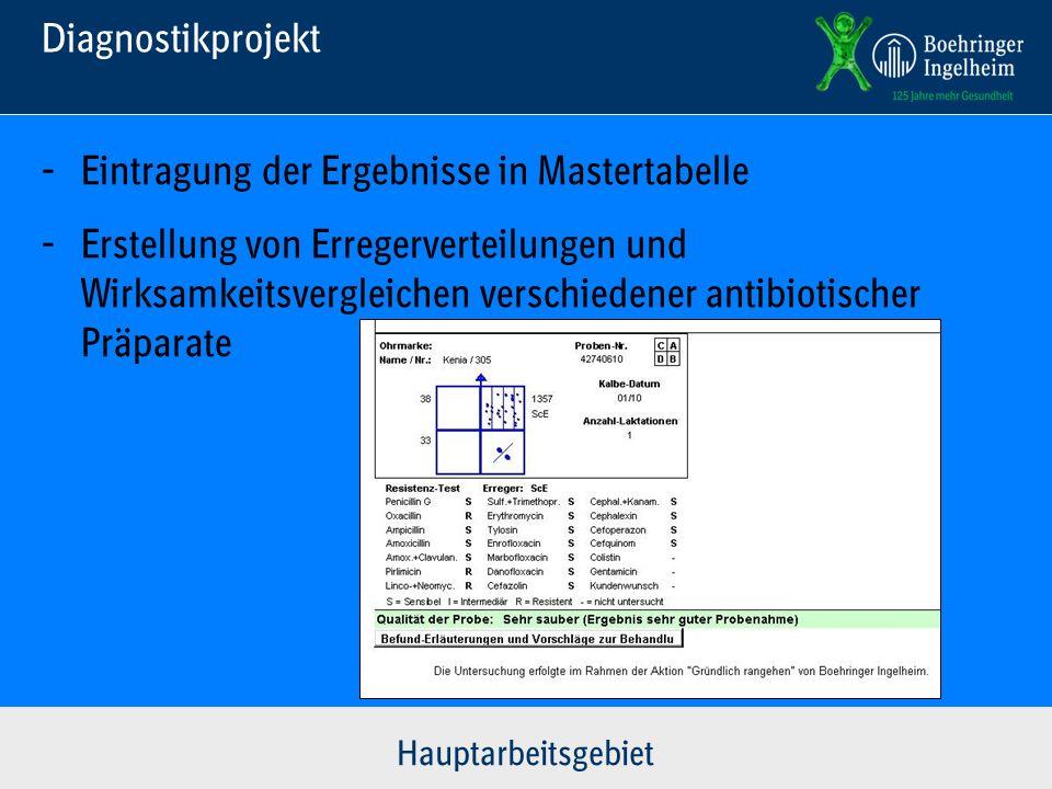 Diagnostikprojekt Hauptarbeitsgebiet - Eintragung der Ergebnisse in Mastertabelle - Erstellung von Erregerverteilungen und Wirksamkeitsvergleichen ver