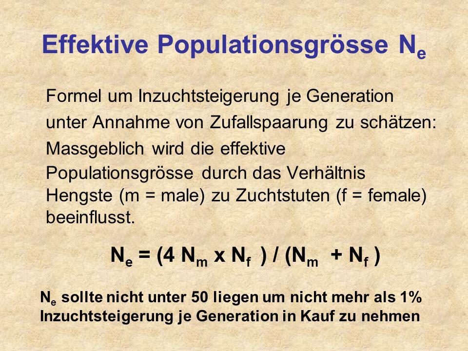 Reinzucht Geschlossene Zuchtpopulationen (Vollblutzucht seit 1793)– Einkreuzung erfolgt in den meisten Reinzuchtpopulationen früher oder später Begren