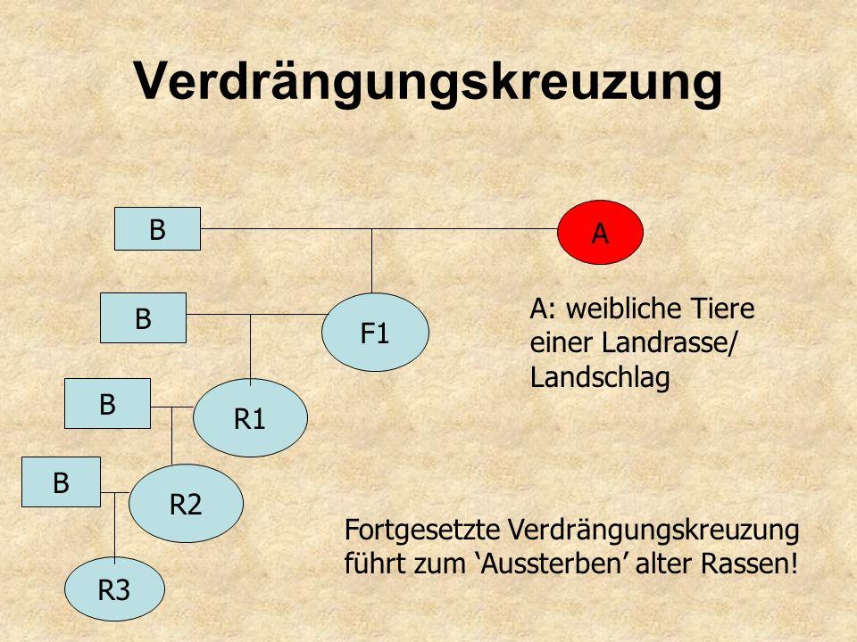 Selektion in offenen Populationen 2.1 Veredelungszüchtung: Pferdezucht Hannover, Trakehner, Haflinger; 2.2 Kombinationszüchtung (Synthetics): Oldenbur