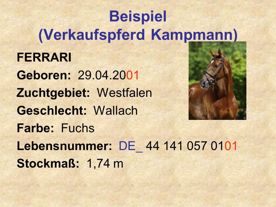 Beispiel (Verkaufspferd Kampmann) FERRARI Geboren: 29.04.2001 Zuchtgebiet: Westfalen Geschlecht: Wallach Farbe: Fuchs Lebensnummer: DE_ 44 141 057 010