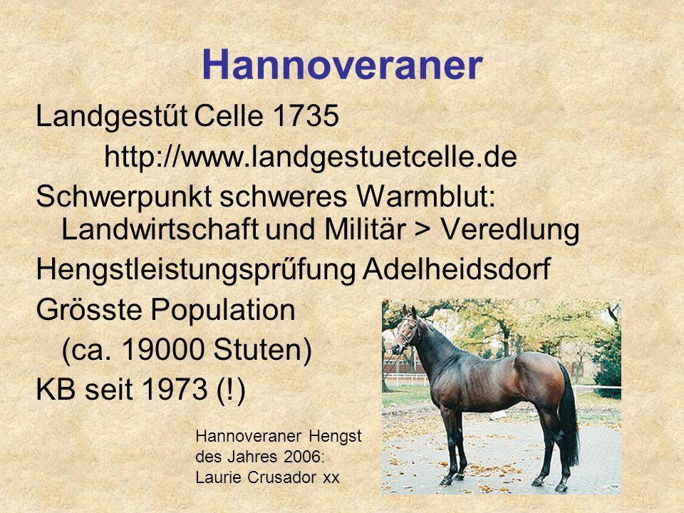 Hannoveraner Landgestűt Celle 1735 http://www.landgestuetcelle.de Schwerpunkt schweres Warmblut: Landwirtschaft und Militär > Veredlung Hengstleistung