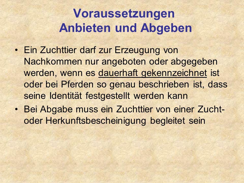 Trakehner INTERCONTI 09 / 00462 / 00, Sch., *165 / 20,0, Fam.: O305B Isabella (Schlegel - Detmold) Zuchtbezirk Hessen E.H.
