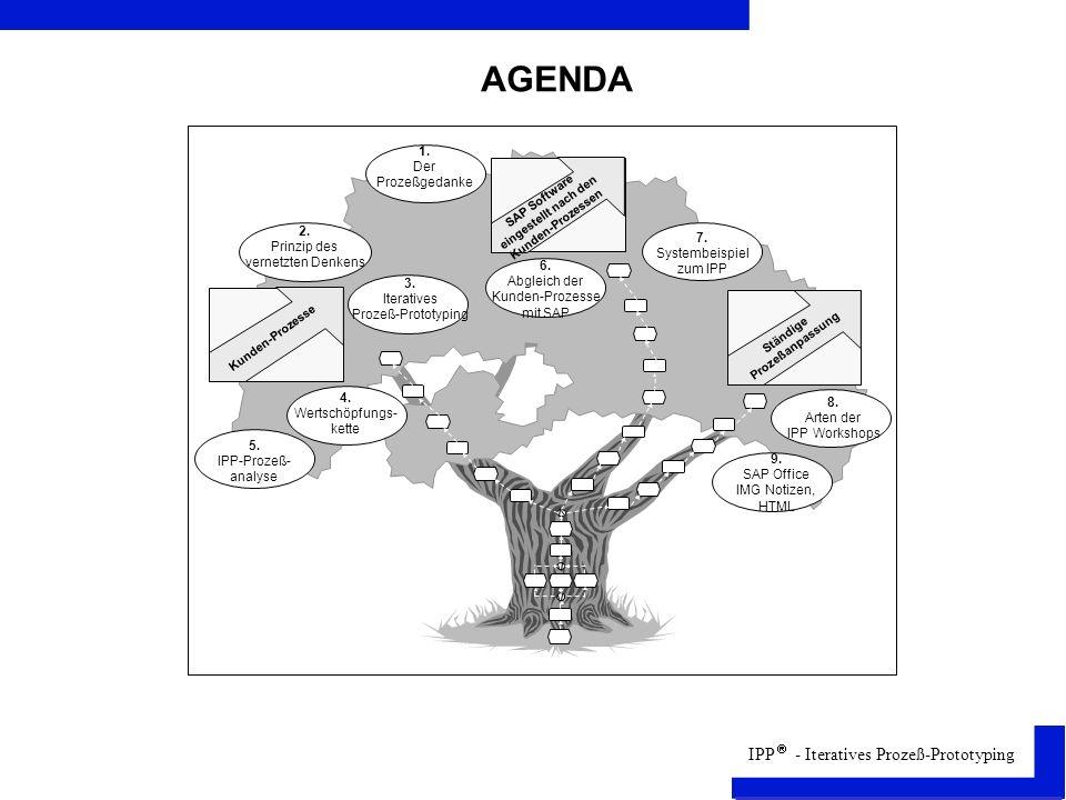 IPP - Iteratives Prozeß-Prototyping Stufen der Prozeßanalyse (1)