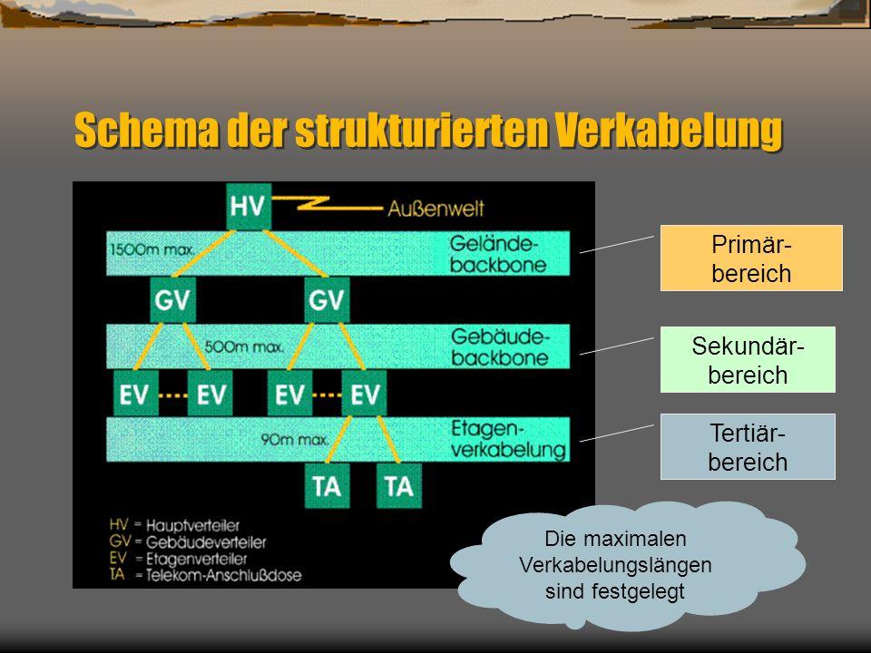 Schema der strukturierten Verkabelung Primär- bereich Sekundär- bereich Tertiär- bereich Die maximalen Verkabelungslängen sind festgelegt